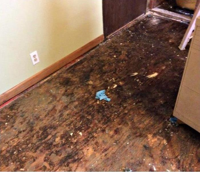 Water Ruins Flooring in North Kenner Before