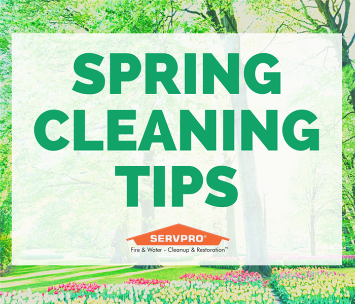 Spring Cleaning Tips On Floral Background.